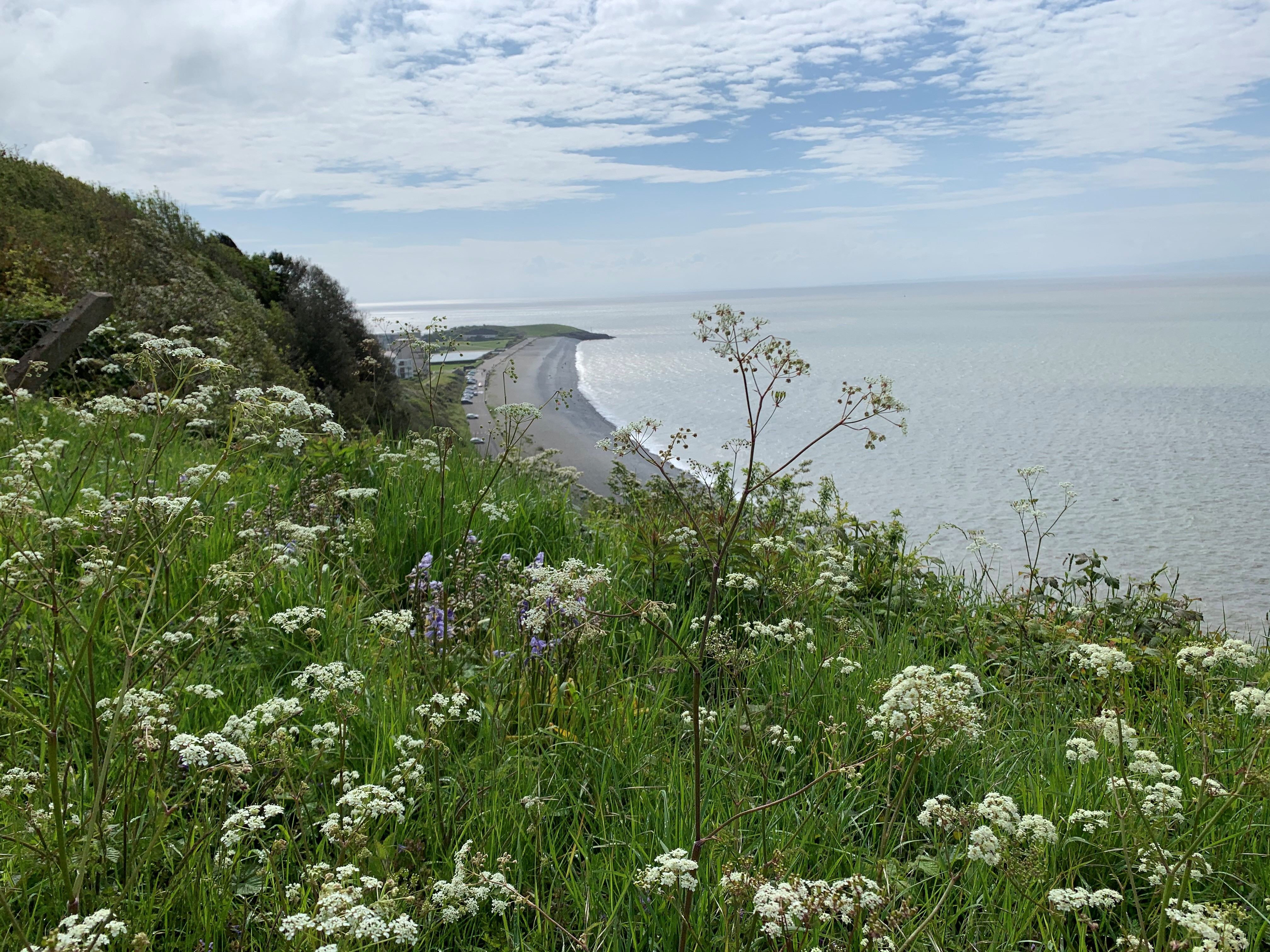The Knap and Porthkerry Circular trail