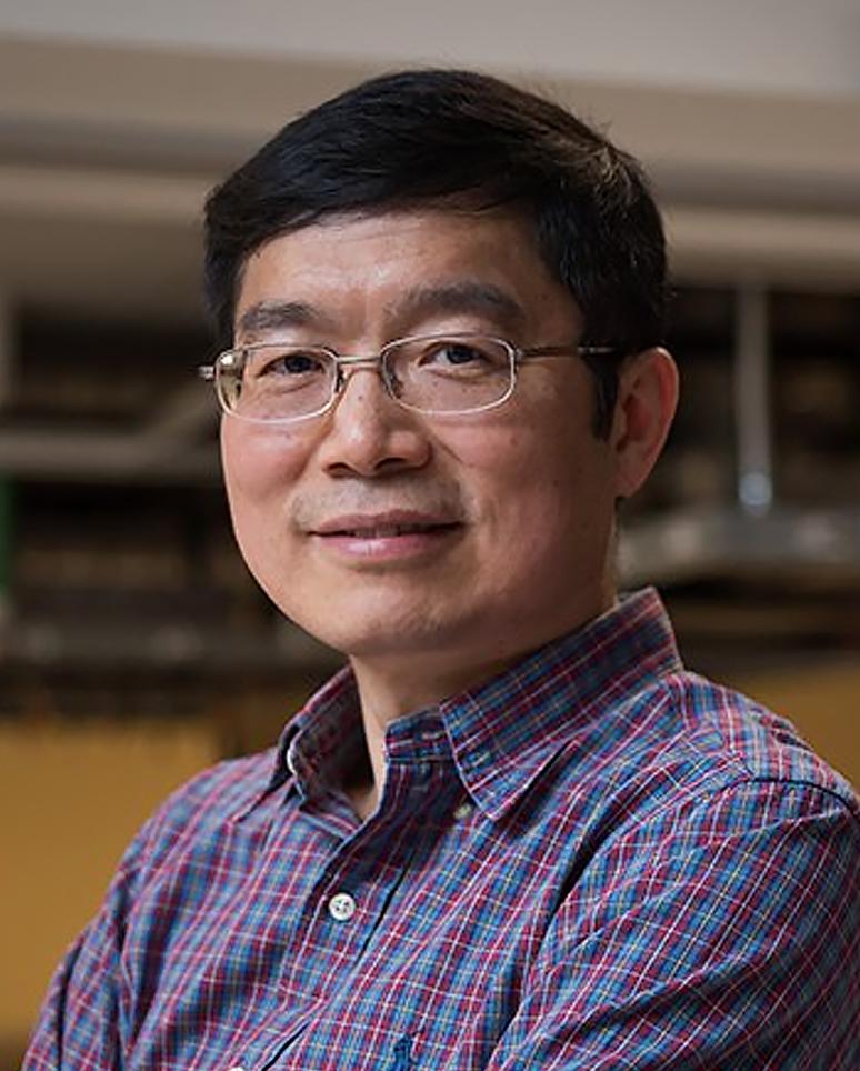 Lihong Wang, PhD