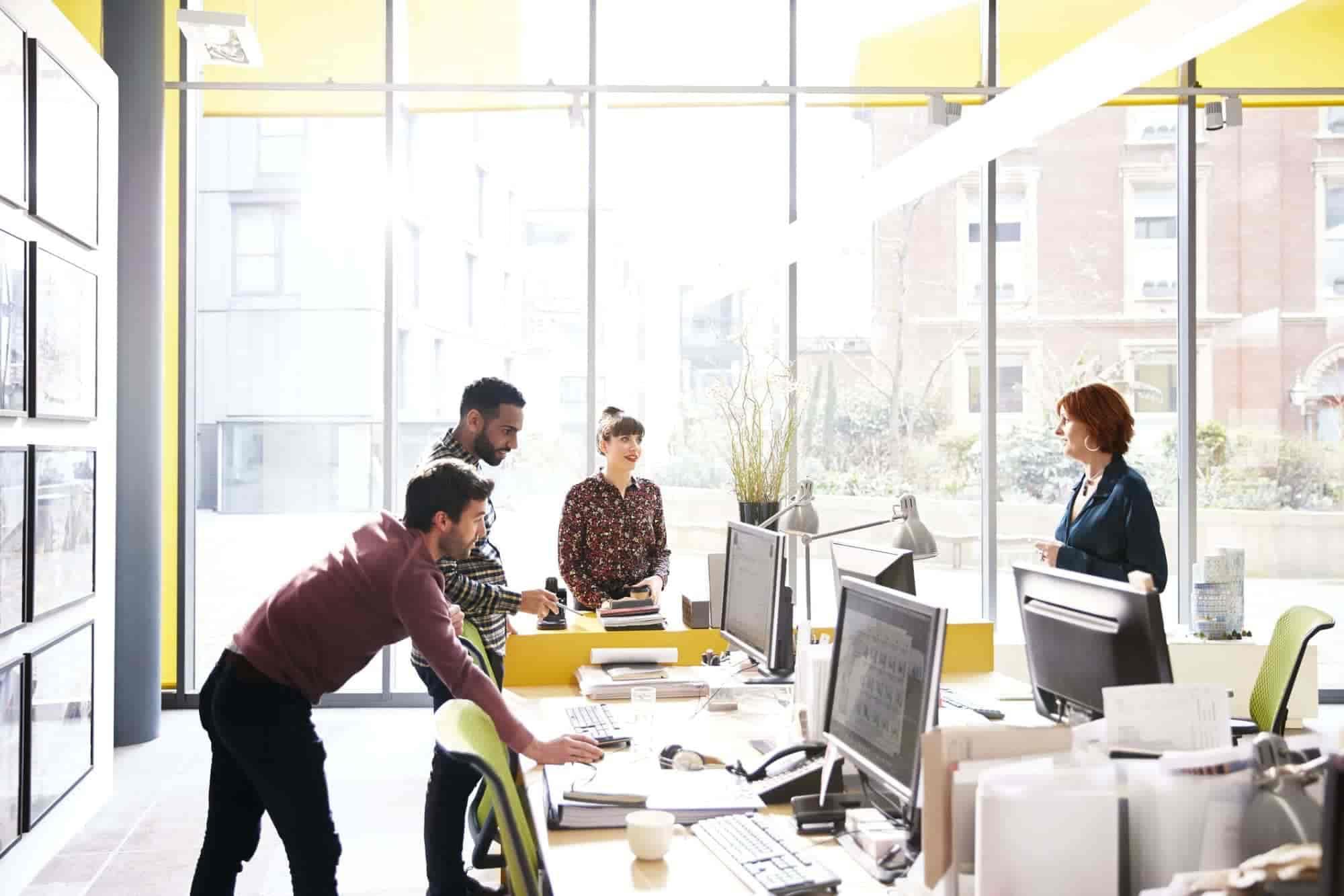 Capital humano e intelectual: definição, importância e como desenvolvê-los na empresa?