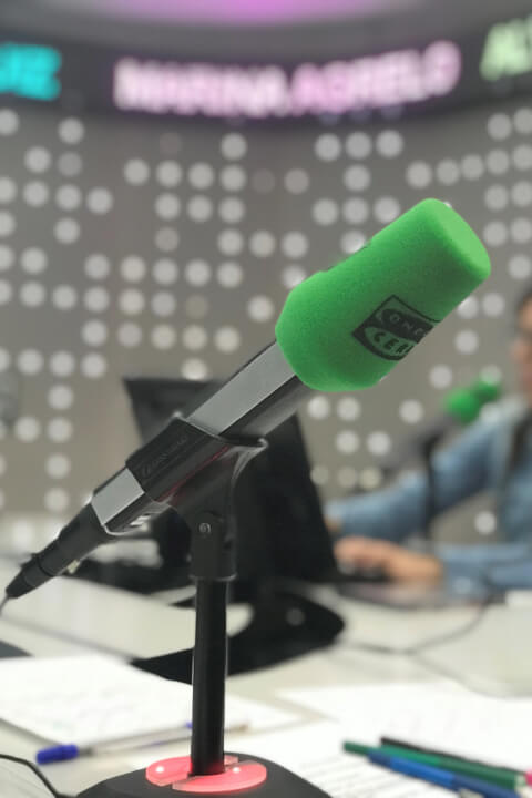 radio set with a microphone