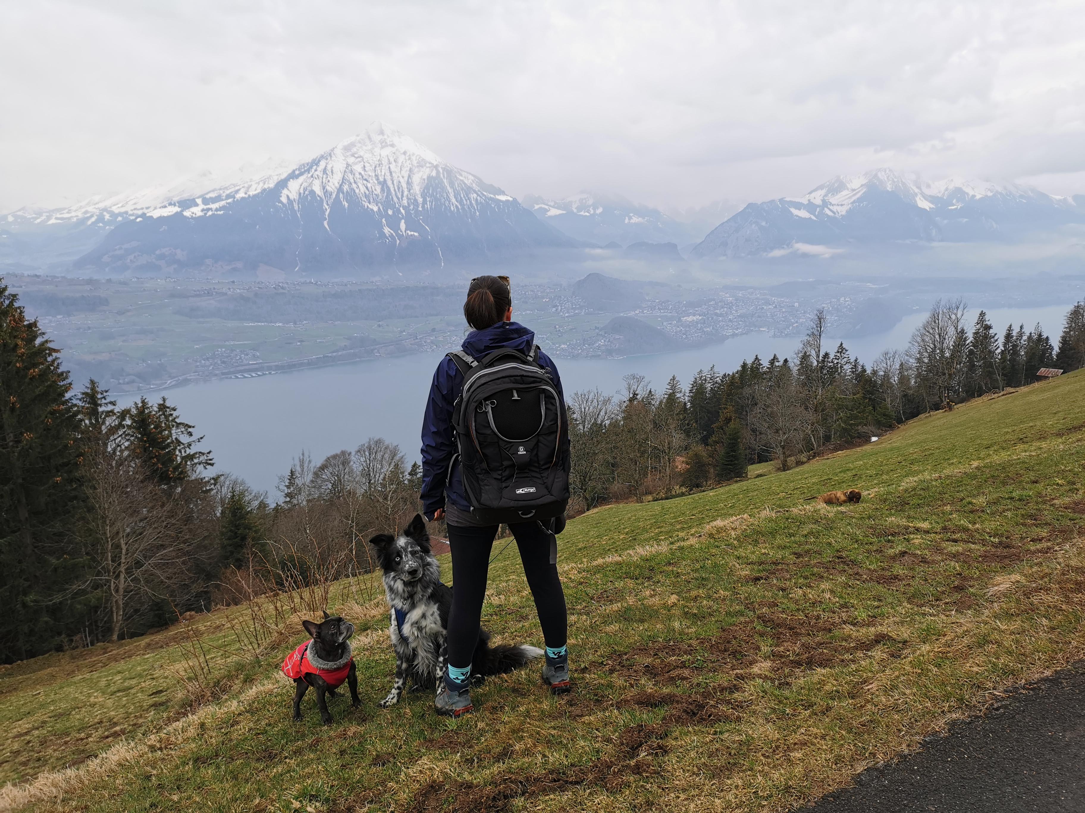 Hund und Mensch in den Bergen