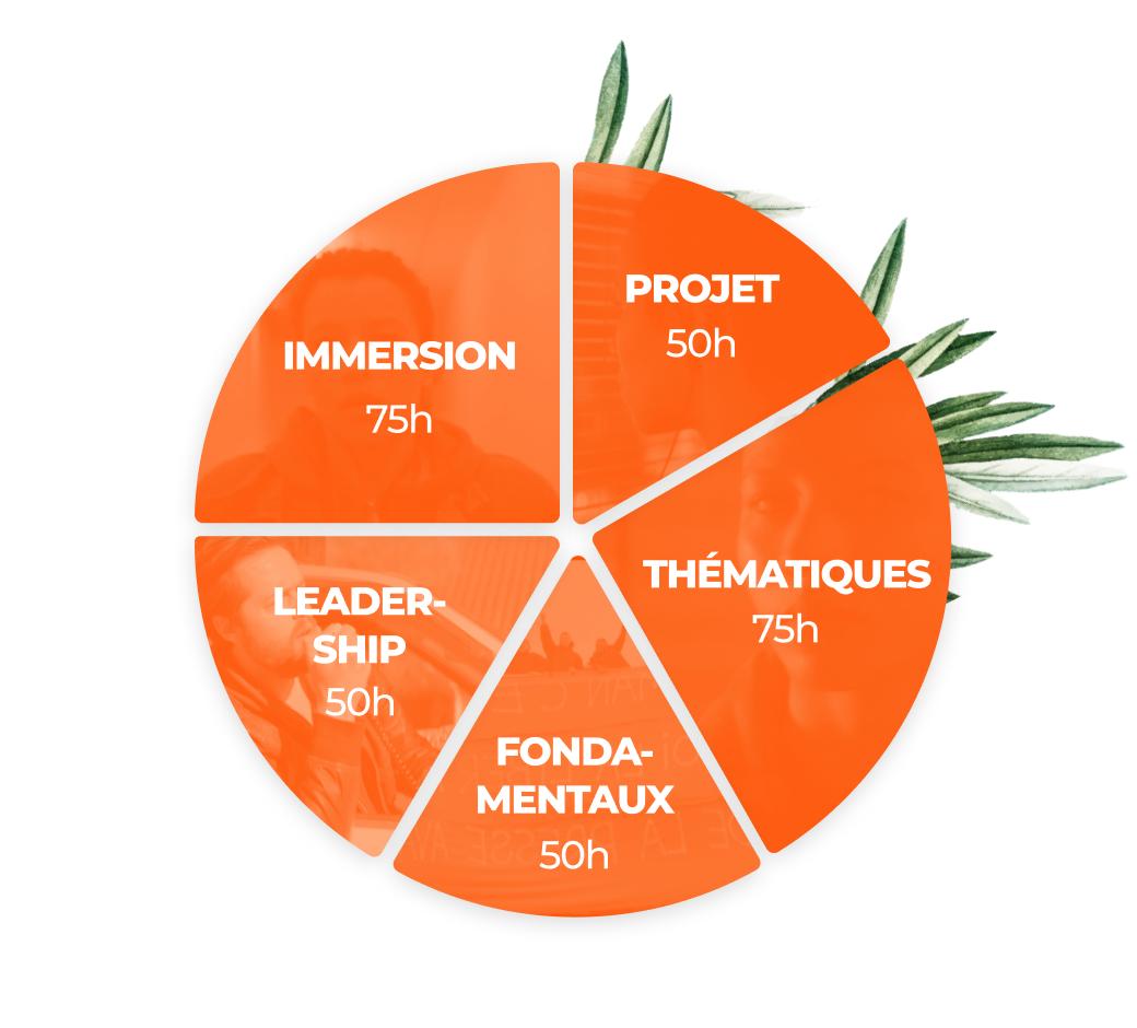 Graphique camembert en 5 parts : Projet, Thématiques, Fondamentaux, Leadership et Immersion