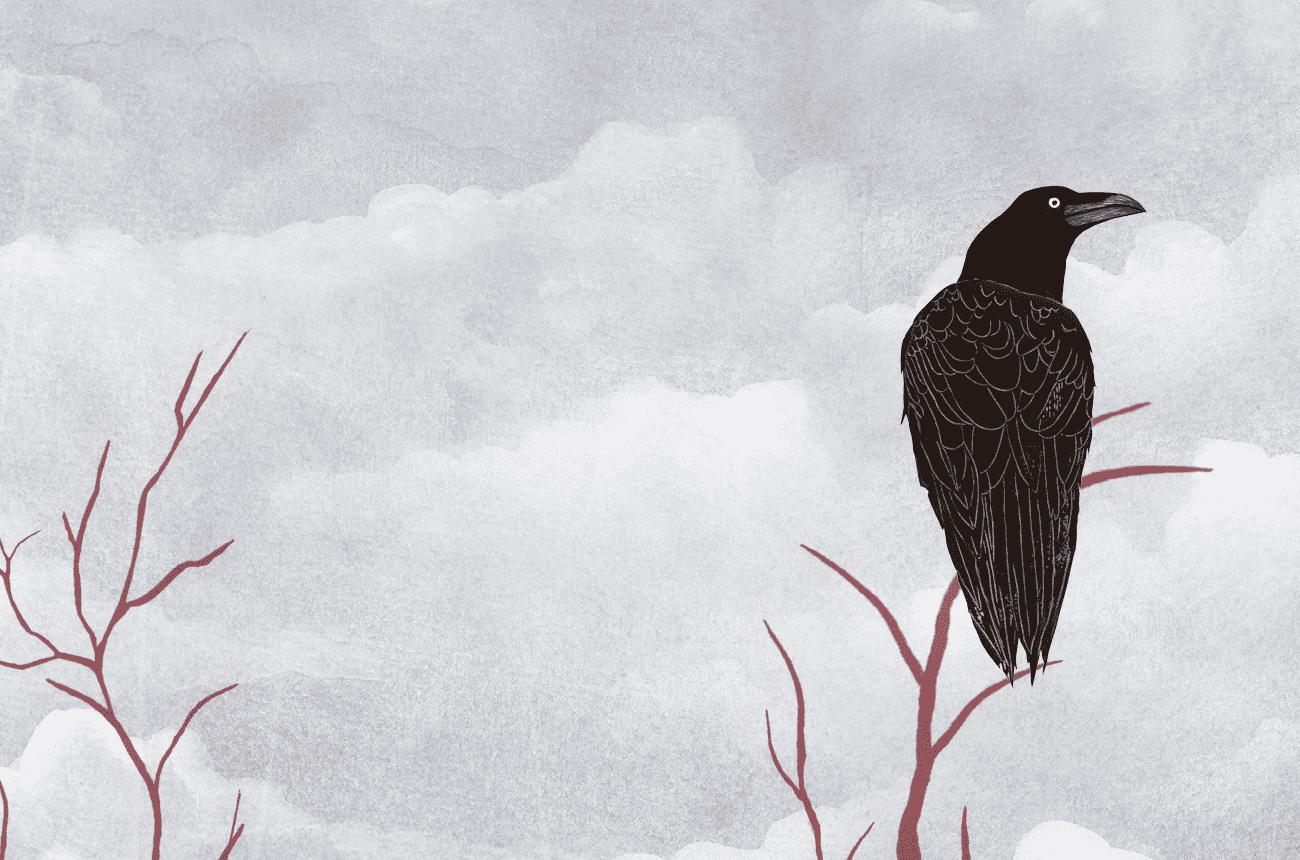 Las ilustraciones de «El Cuervo» optan a los Premios Euskadi de Literatura