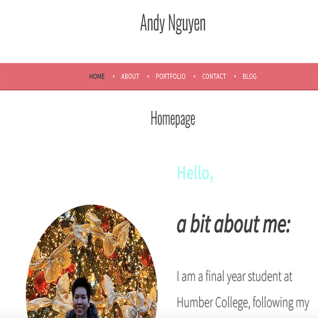 A screen shot of a web page with the desiger's face and menu bar at top. The Homepage says Hello.