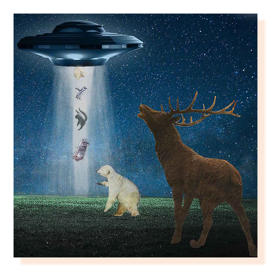 A composite image of a moose and bear looking up at a spaceship in a starry sky