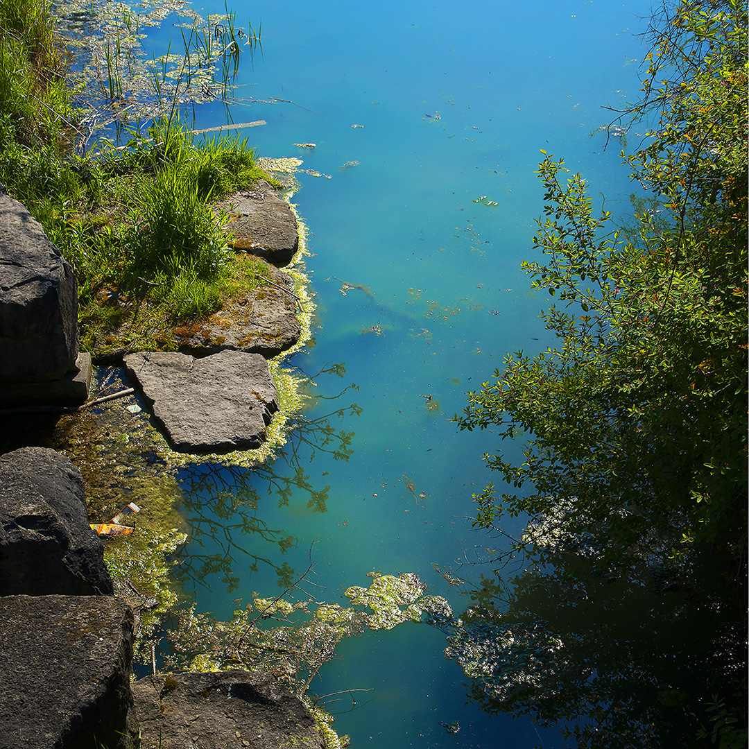 A view from above of a shoreline with deep blue water on a sunny day. Rocks and shrubs on either side of a water channel