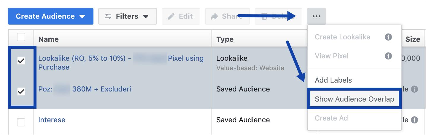 Agentia Maximize Promovare Facebook Ads 3-show-audience-overlap