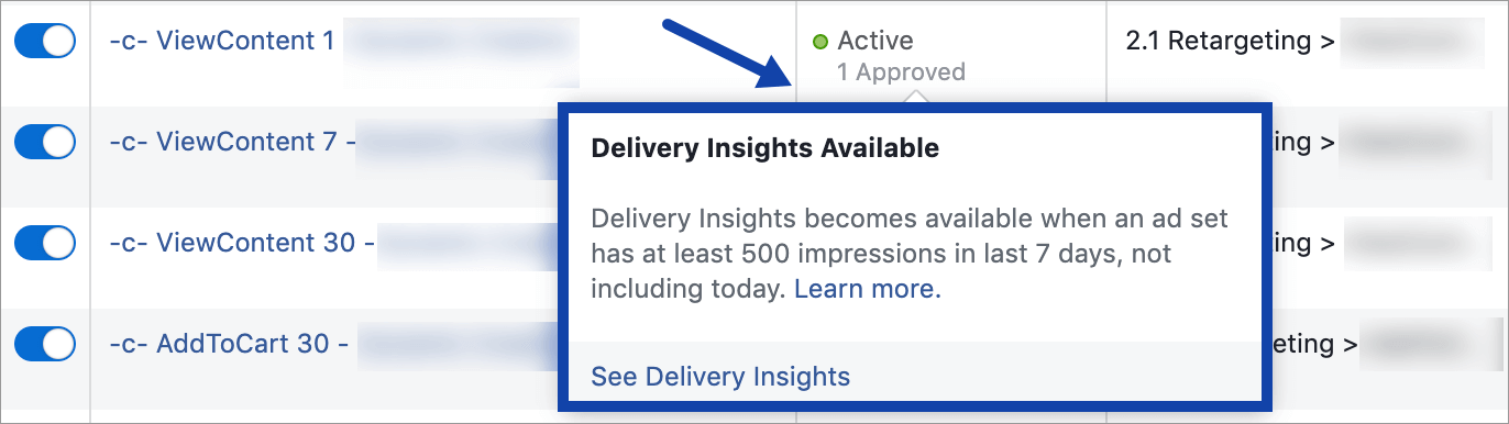 Agentia Maximize Promovare Facebook Ads 5-delivery-insights