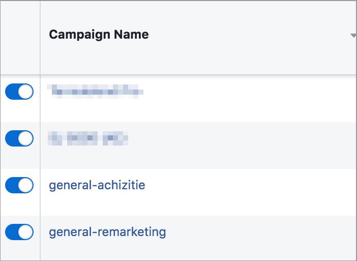 Agentia Maximize Promovare PPC Facebook Ads 4-campanii-facebook-initiale