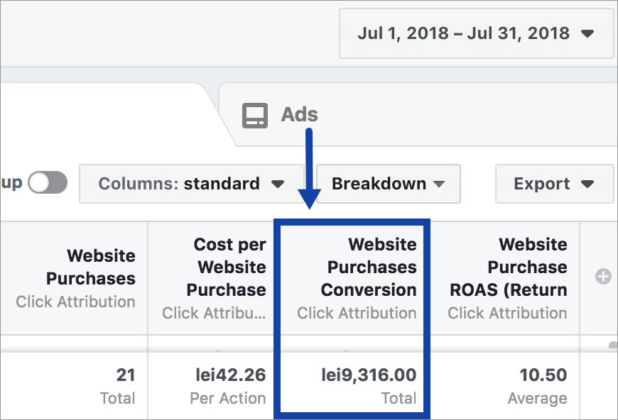 Agentia Maximize Promovare PPC Facebook Ads 8-performanta-cont-iulie