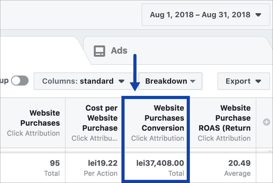 Agentia Maximize Promovare PPC Facebook Ads 9-performanta-cont-august