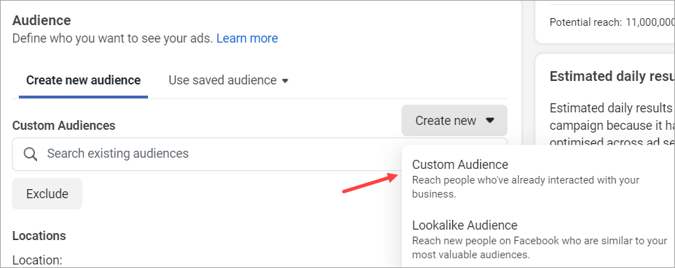 2 Creare Custom Audience Agentia Maximize