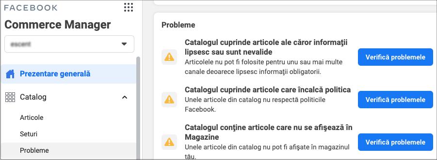 21 Agentia Maximize Blog Cum Sa Facebook - Probleme