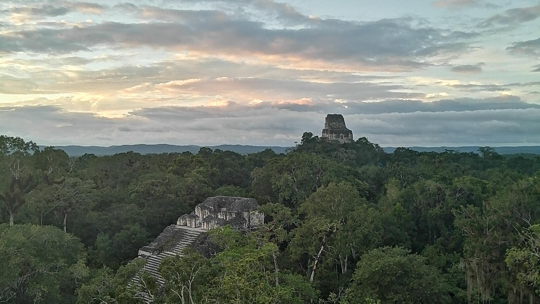 Ruins of Tikal, an ancient pyramid in Guatemala