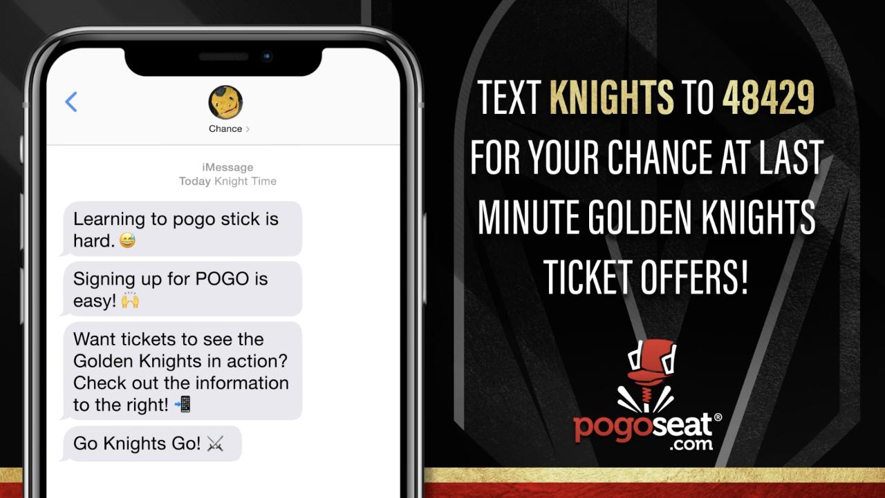 Partner Case Study: Vegas Golden Knights