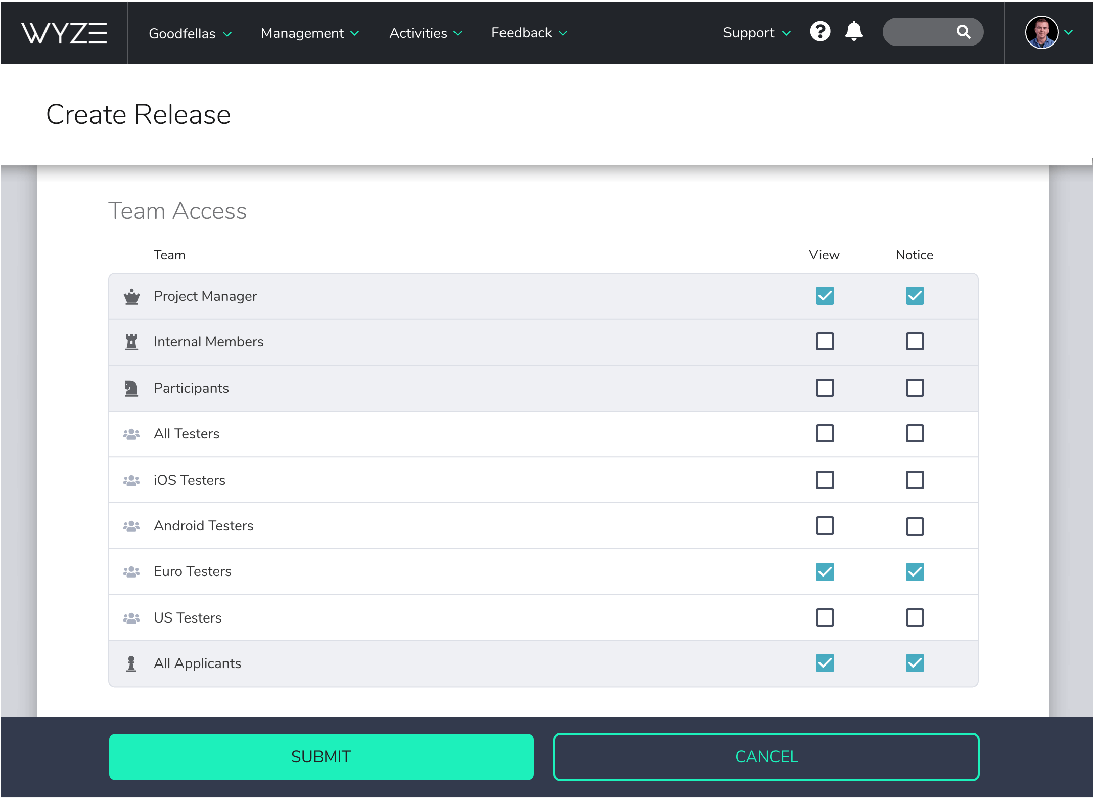 Screenshot of Centercode's Team Access controls