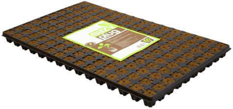 Eazy Plug Stecklingstray 150 Stück