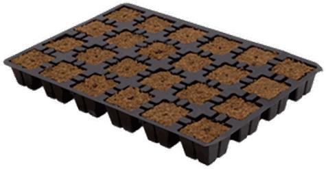 Eazy Plug Stecklingstray 24 Stück