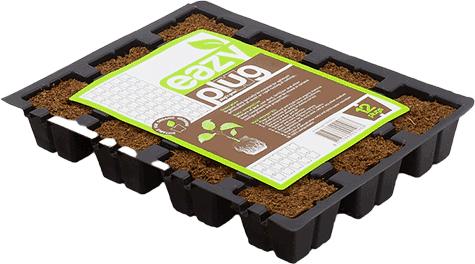 Eazy Plug Stecklingstray 12 Stück