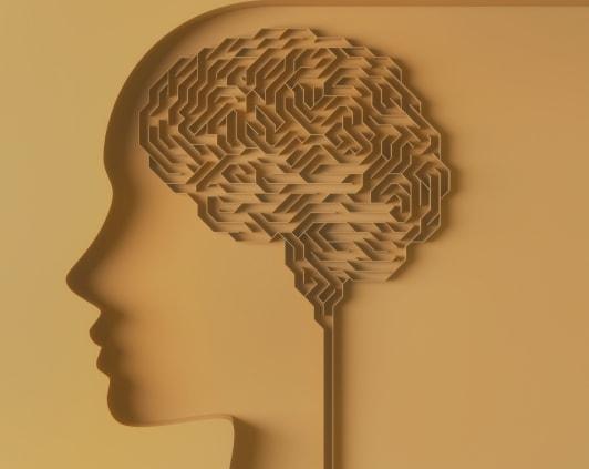 Illustration of brain as maze.