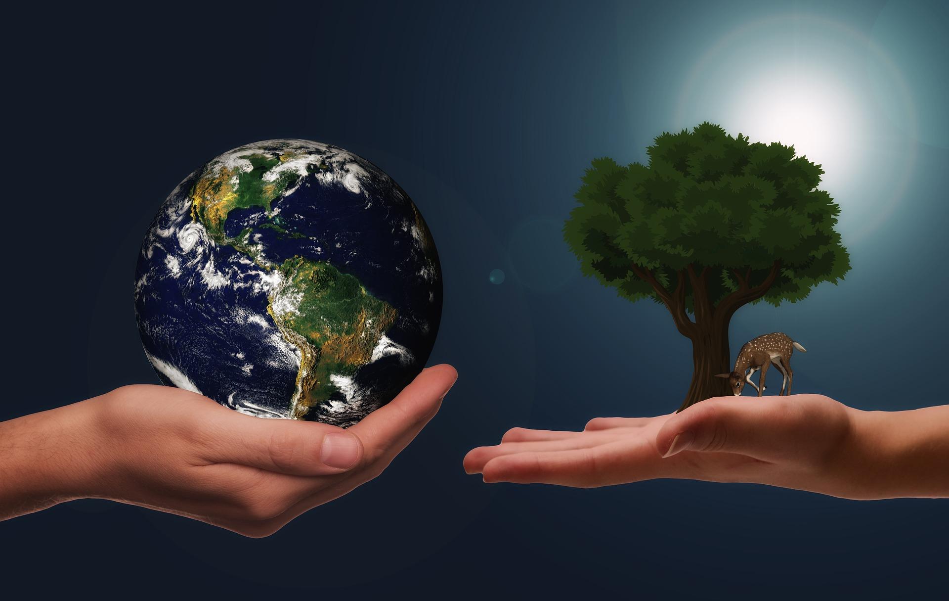 Nasjonal bærekraftssone for grønn sirkulær verdiskaping