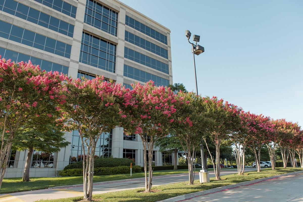 Landscape development company for architects - contractors - developers