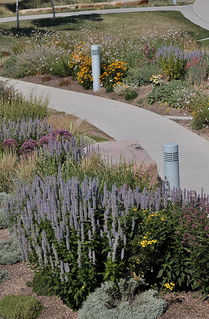 Customized landscape maintenance plans for commercial properties