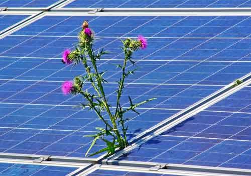 Différents facteurs influent sur la production d'un panneau solaire.