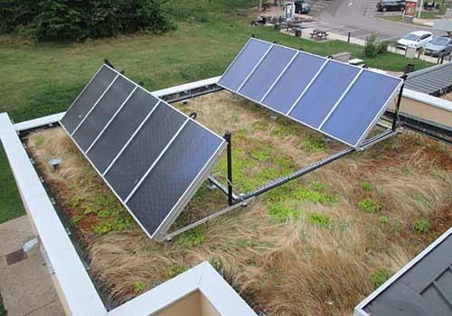 Les panneaux solaires peuvent êtres installés sur une toiture végétalisée.