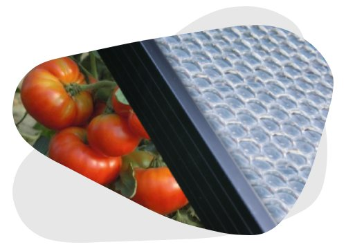Les panneaux Insolight sont des panneaux solaires à haut rendement.