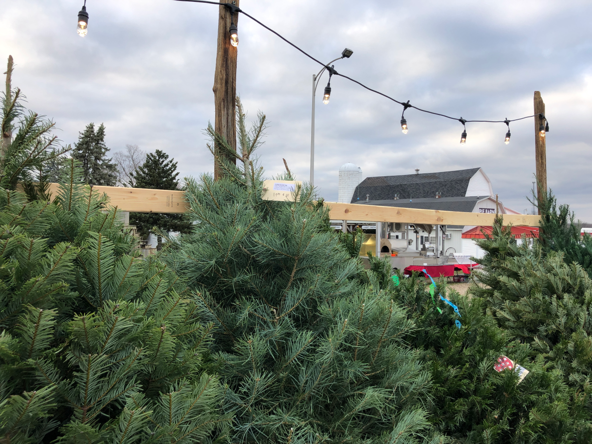 Uncle John's Cider Mill Tree's