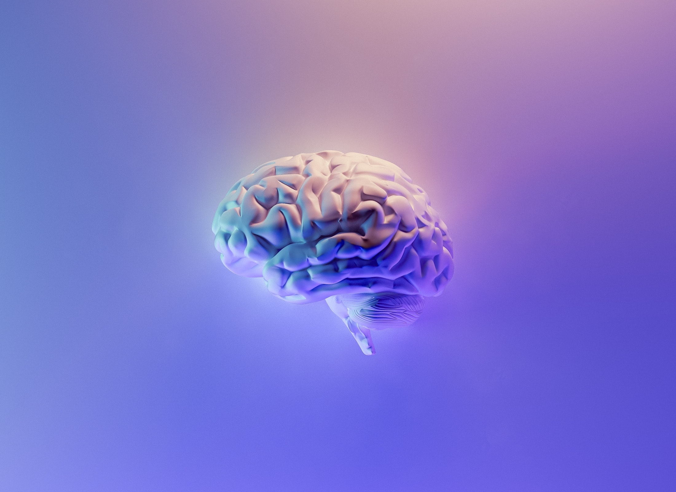 Brain on colorful background.