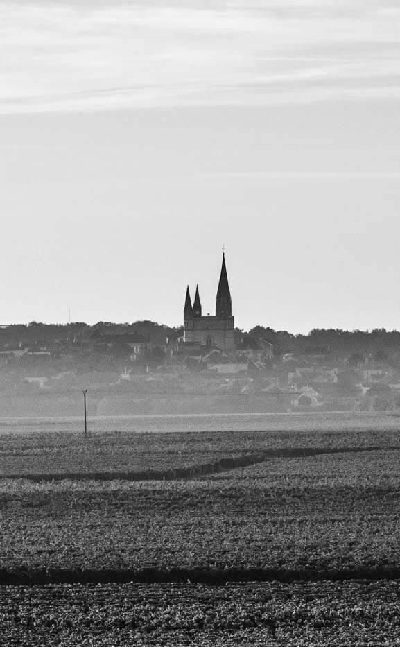 Collégiale Puy-Notre-Dame