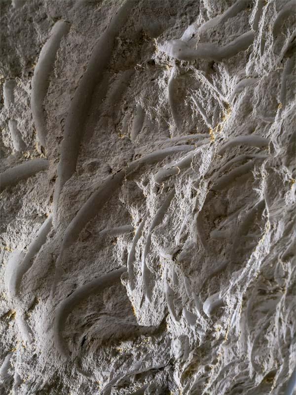 Cave en craie blanche, Domaine du Vieux Pressoir