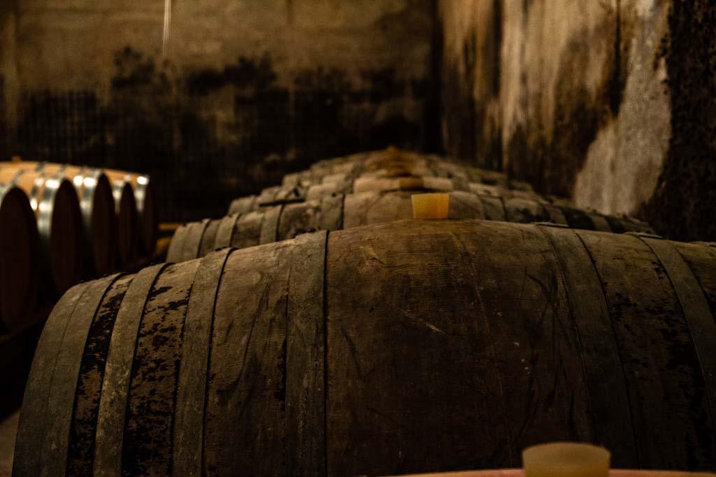 Vin dans fûts au Domaine du Vieux Pressoir