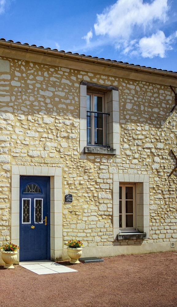 Vignes Saumur