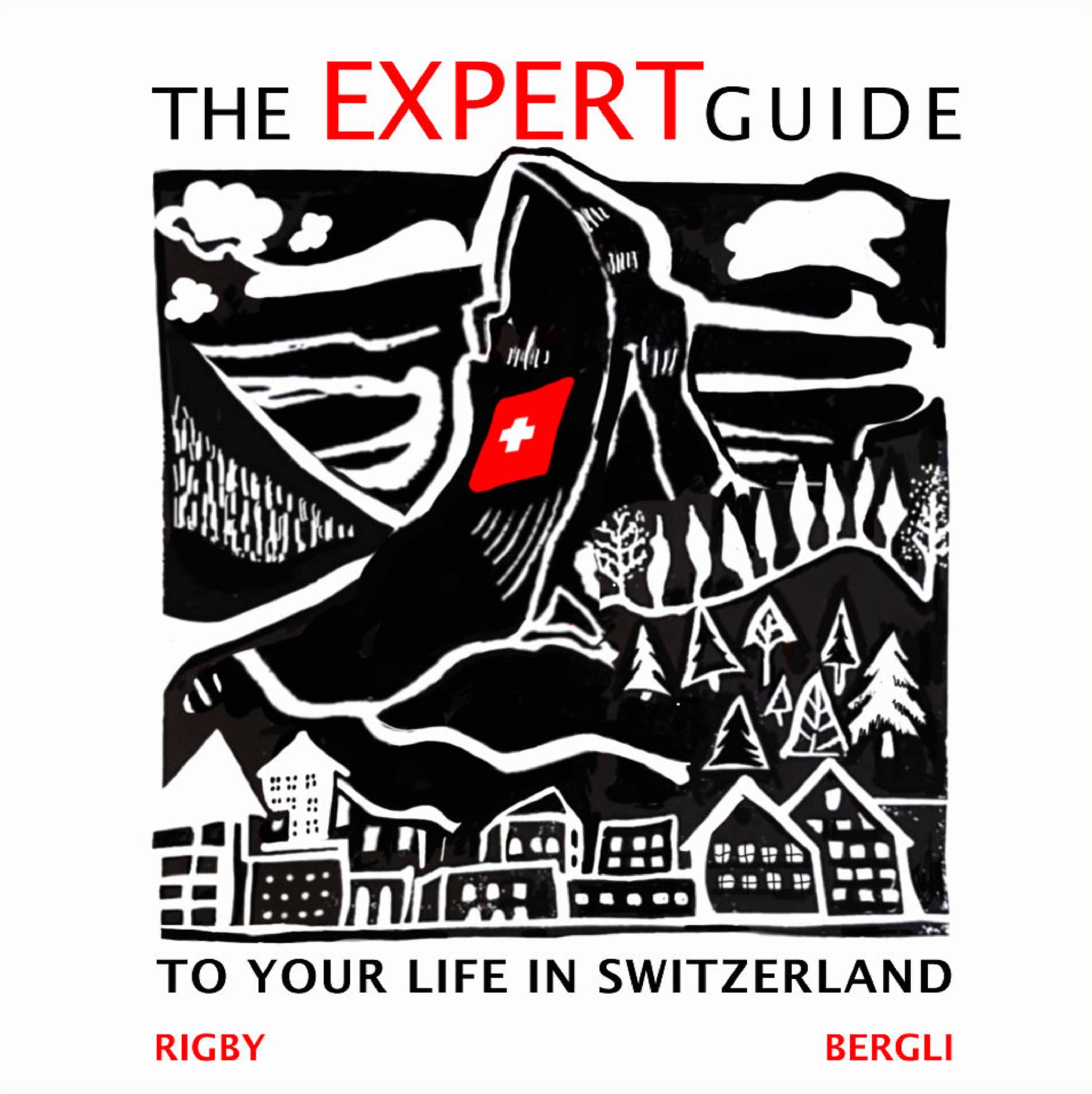 The Expert Guide to Your Life in Switzerland artwork