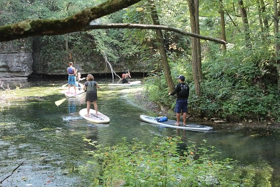 Group of people paddle boarding down stream