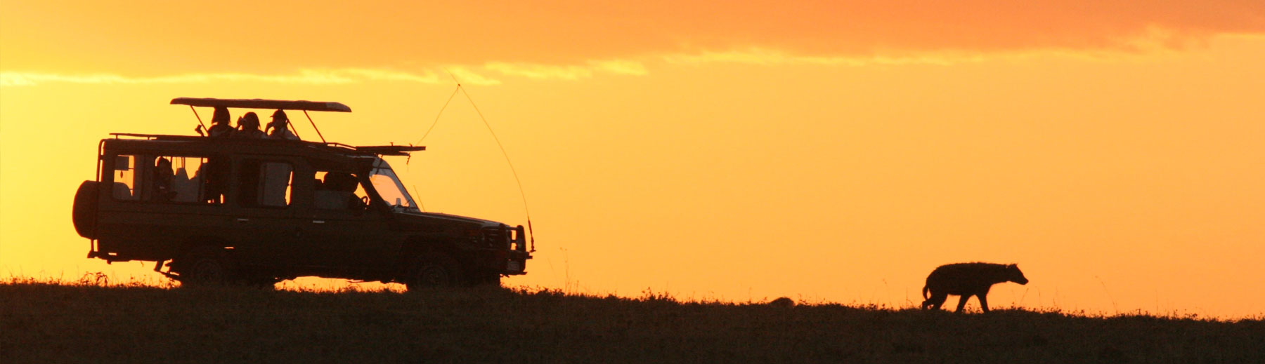 A game drive vehicle tracking a hyena at sunset