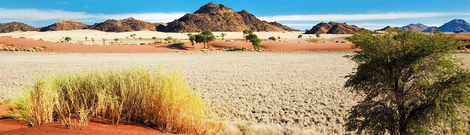 A beautiful scene of the Namib Naukluft park