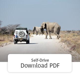 Download Self-drive PDF