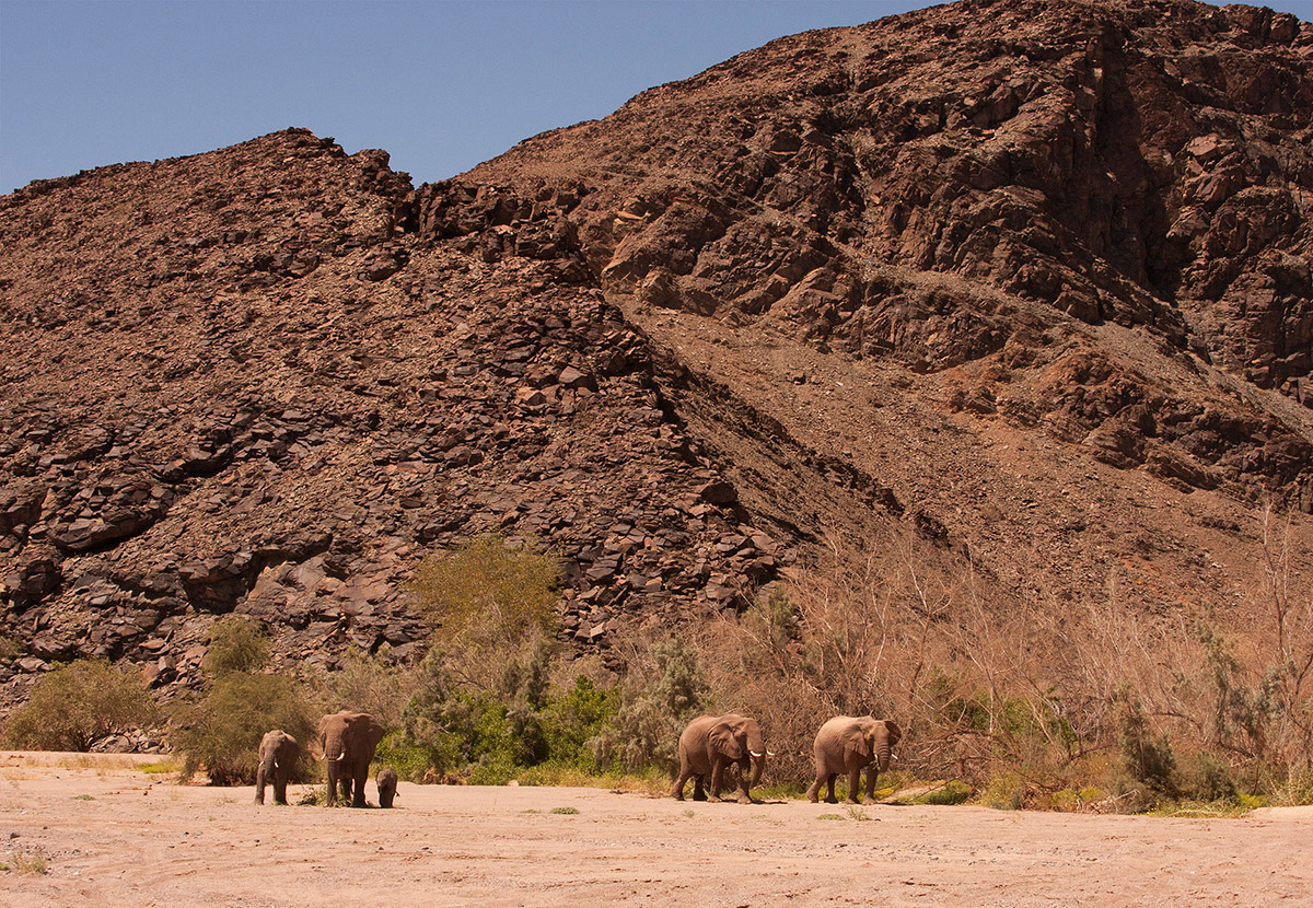 The 10 Best Places to Visit in Namibia inline image 601cec79814e4