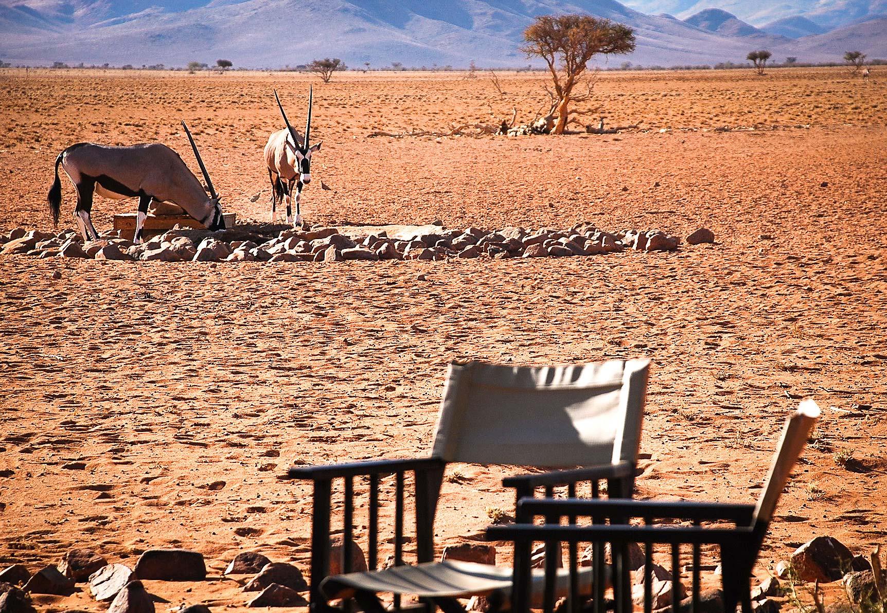 NamibRand Nature Reserve inline image 5cb5a80dc0cd1