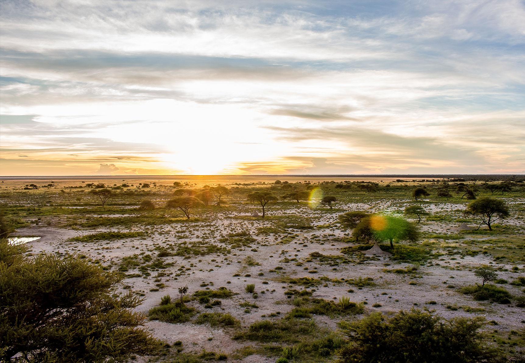 Etosha National Park inline image 5cb5987d747fa