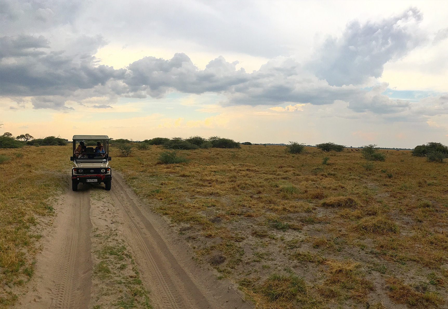 Is it possible to self-drive from Namibia to Victoria Falls? inline image 5bf3bf11dc89d