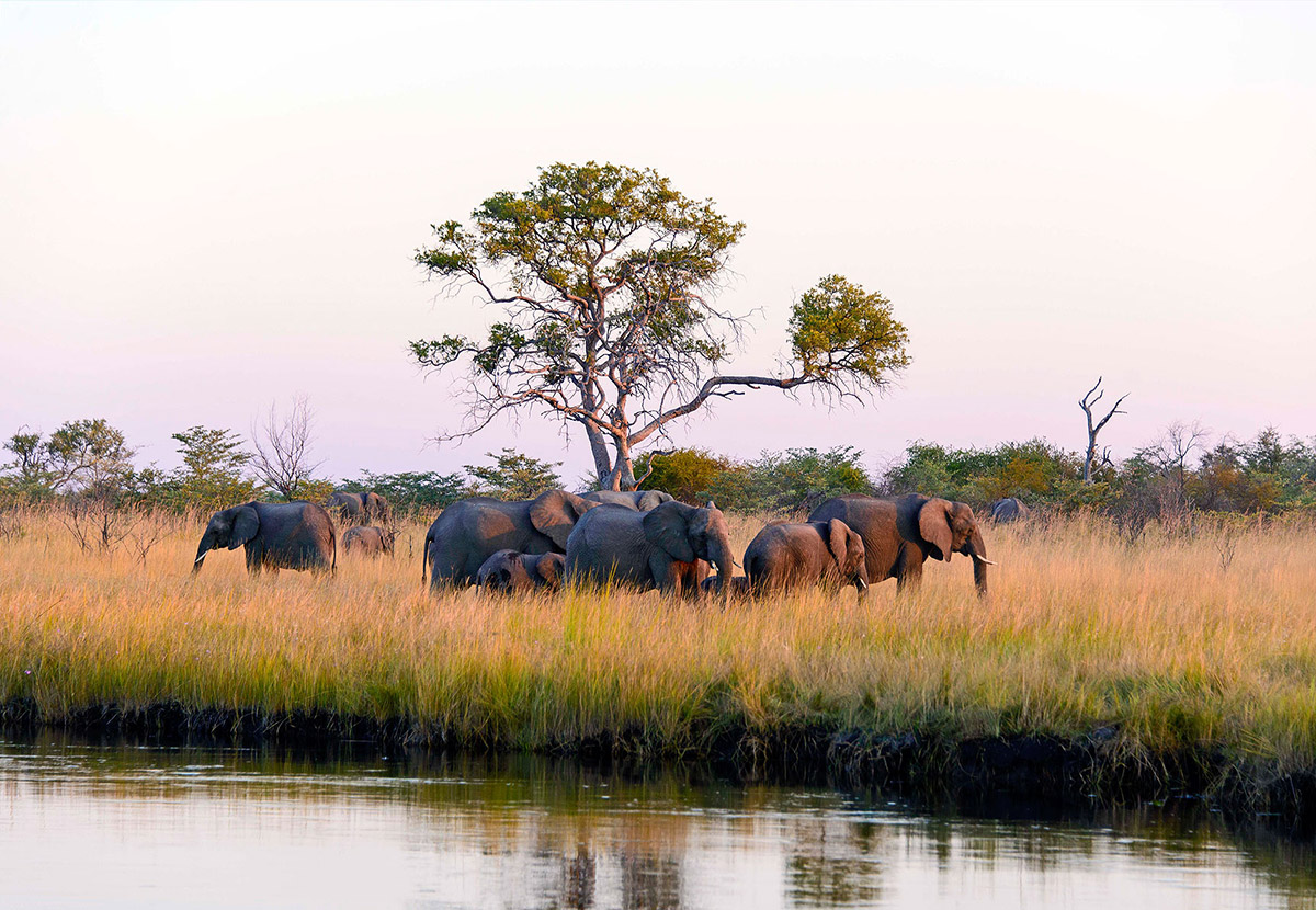 The 10 Best Places to Visit in Namibia inline image 601c33c5ed675