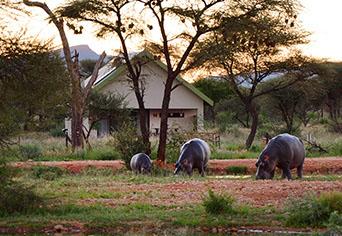 Camp Elephant Erindi Private Game Reserve