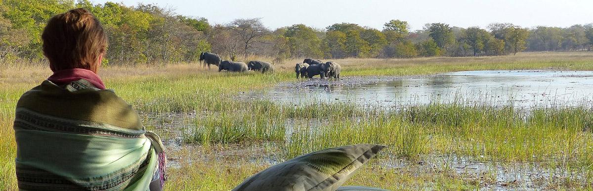 Ultimate Zambia Safari