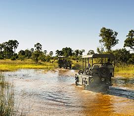Namibia & Botswana Roundabout Safari