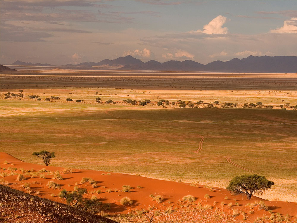 The endless desert landscape of red sand dunes, open grass plains and distant mountains.